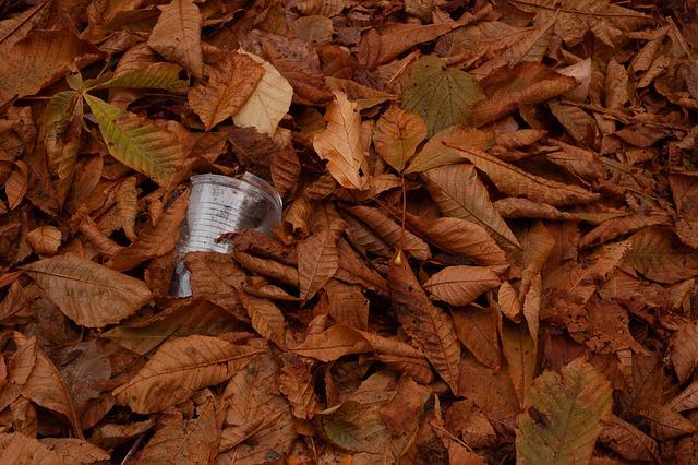 Plastic Plastic Cup Leaves  - Filmbetrachter / Pixabay